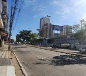 CÓRREGO SUPIRIRI – Saae inicia transplantio de árvores para o início das obras