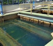 Saae orienta população para  o consumo consciente de água